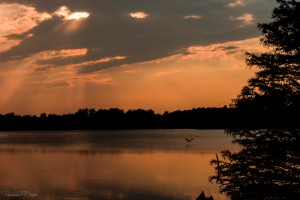 12513 - Jacobsen Lake Sunset jpg small 8