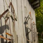 Three Old Sleds - Parham P Baker Photography