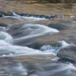 Golden Swirls - Parham P Baker Photography