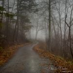 Into the Beyond - Parham P Baker Photography