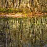Indian Creek Reflections - Parham P Baker Photography