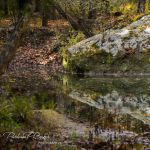 Indian Creek Rock Reflections - Parham P Baker Photography