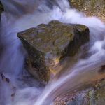 Anglin Rush - Parham P Baker Photography