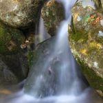 Anglin Drop - Parham P Baker Photography