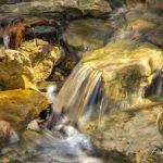 Riffle on Campsite Creek - Parham P Baker Photography